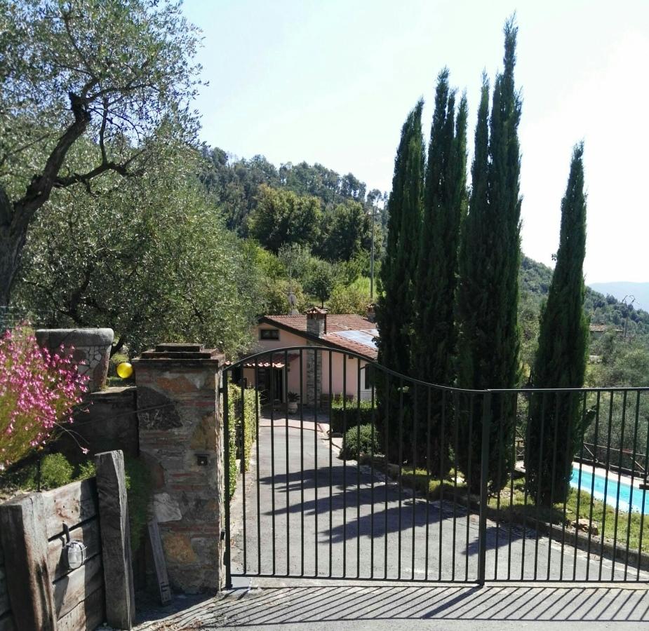 Villa singola Lucca LU708