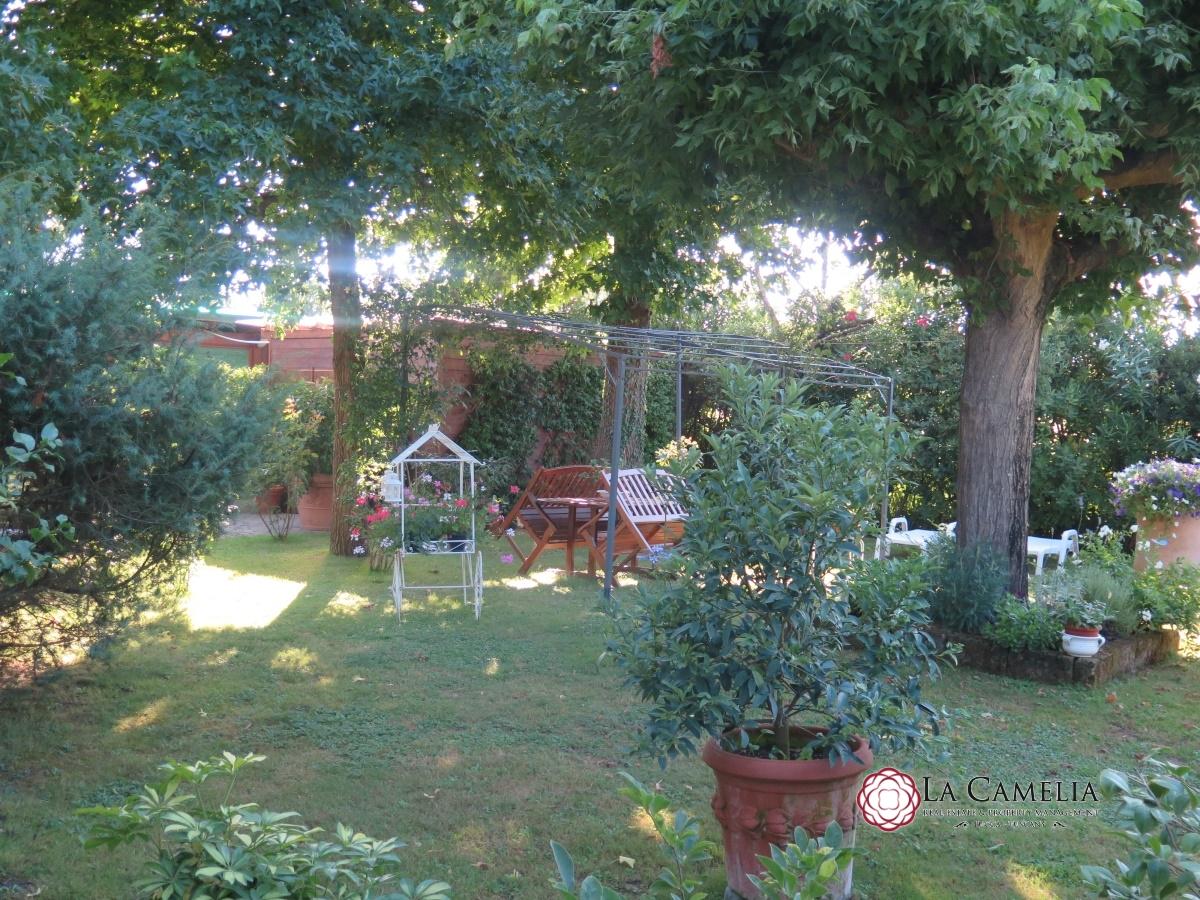 Villa singola Camaiore LU4919