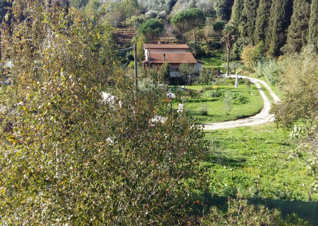 For Sale Farmhouse Camaiore - Semi detached cottage with nice garden- pleasant panorama over the hills of Camaiore Locality