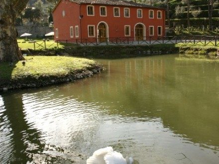 Holiday Home - Casa Laghetto - Luxury Villa - Lucca countryside
