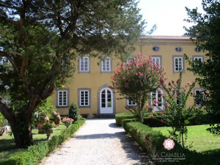Weekly Holiday Rental - Villa dei Fiori - Luxury Villa - Lucca countryside
