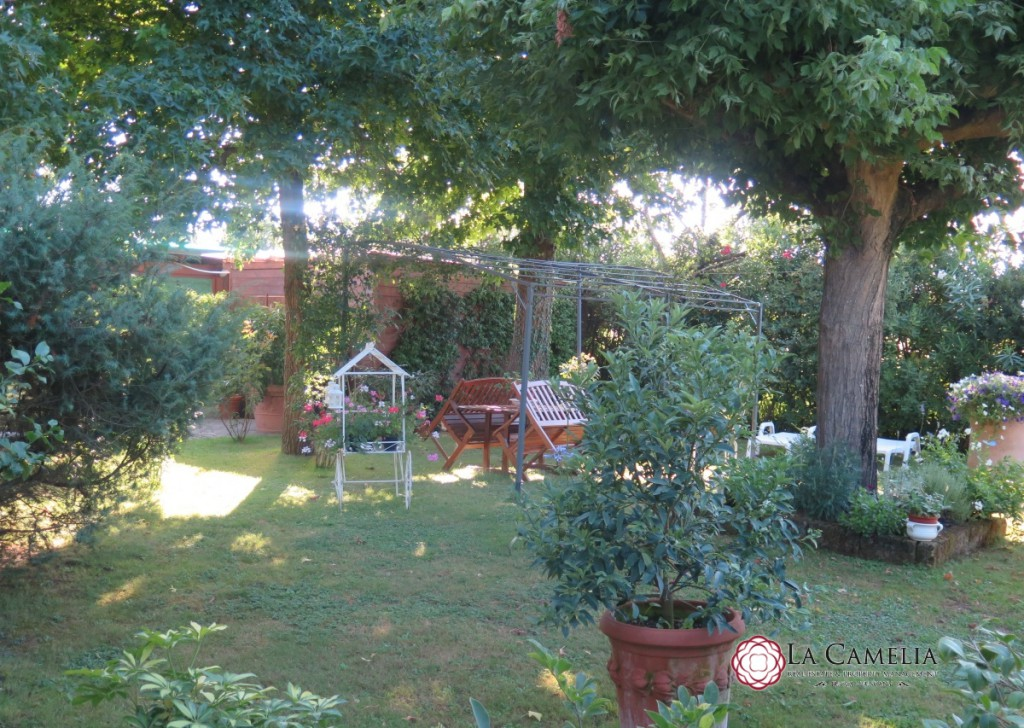 For Sale Villa Camaiore - Camaiore - detached Villa with large garden, swimming pool and outbuilding Locality