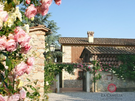 Holiday Home - Villa Il Mulino - Luxury Farmhouse - Lucca countryside