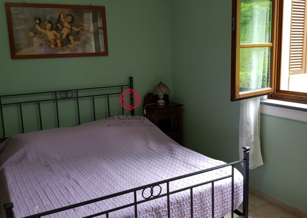Holiday Rentals Villa Lucca - Country villa with swimming pool  - Lucca countryside Locality