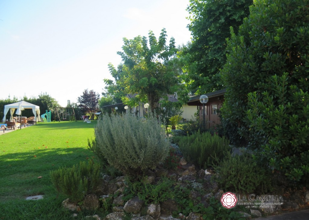 Sale Villa Camaiore - Camaiore - detached Villa with large garden, swimming pool and outbuilding Locality