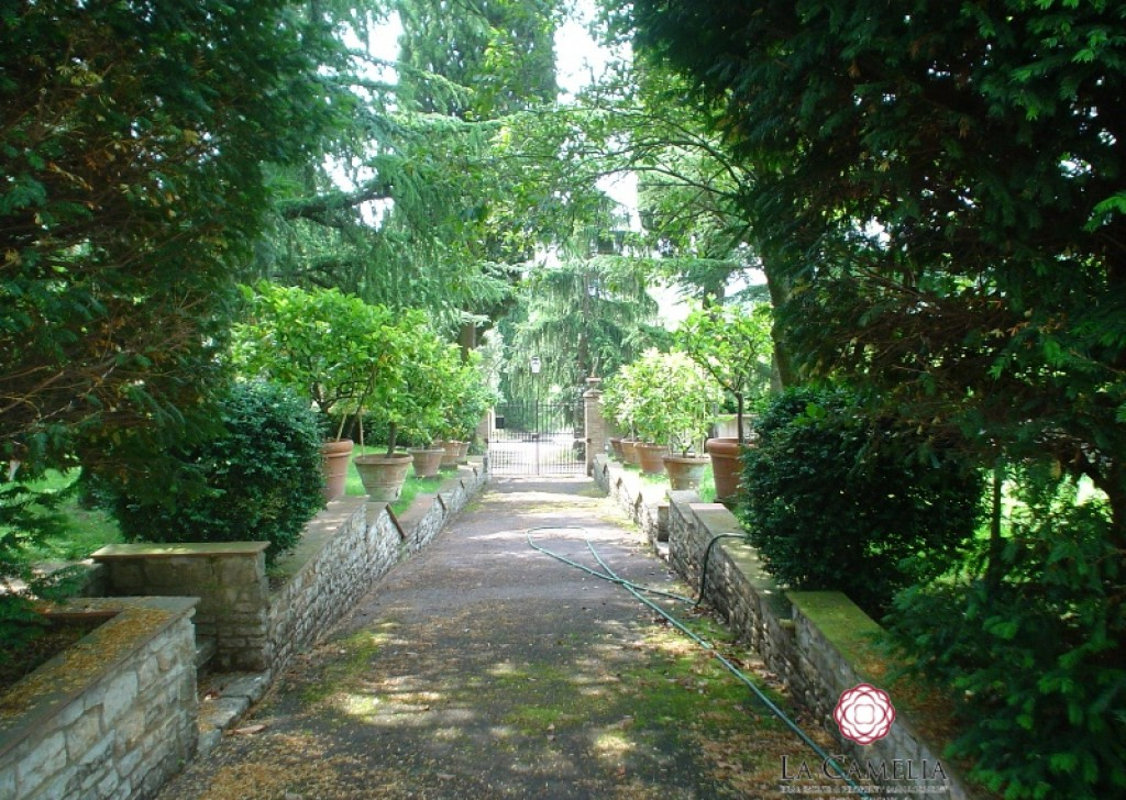 Sale Villa Capannori - Historical Luxury Villa with swimming pool  - Lucca Hills Locality